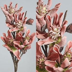 Květiny tvarovatelné