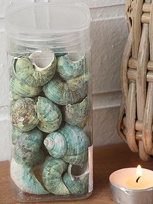 ulity dekorační - přírodní materiál | A03593