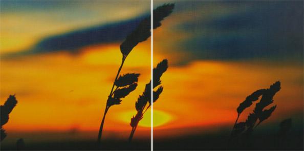 obraz 2 ks 60x60cm - laminované plátno | A05112