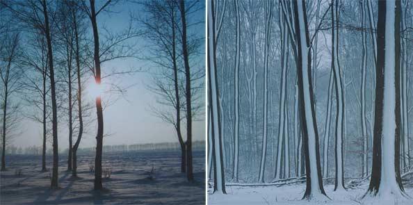 obraz 2 ks 60x60cm - laminované plátno | A05122