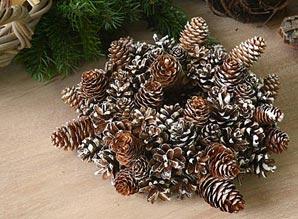věnec dekorační - přírodní materiál | A06840