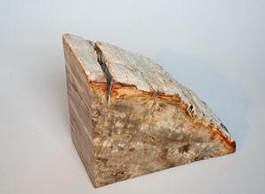 zarážka na knihy - zkamenělé dřevo  | A08051