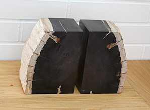 zarážka na knihy - zkamenělé dřevo - sada 2 ks | A08060
