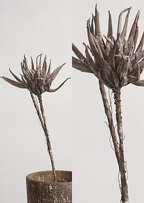 dekorace-umělé květiny | A70260_VHN