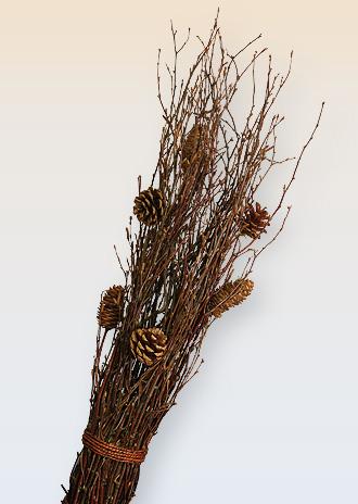 větve dekorační - sušené se šiškami - přírodní materiál | A71710