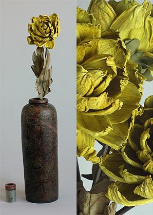 dekorace- celulozové květiny | A75630_ZL1