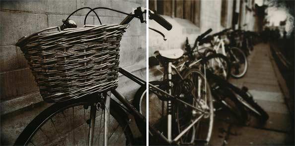obraz 2 ks 50x50cm - laminované plátno | A02268