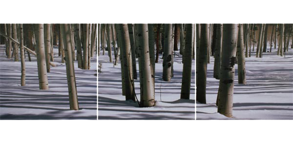 obraz 3 ks 60x60cm - laminované plátno | A05013